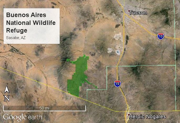 BANWR is located in the Altar Valley southwest of Tucson, AZ. The refuge abuts the US-Mexico border in the south and lies in the eastern shadows of the Baboquivari Peak