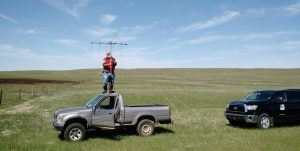 Dr. Toepfer tracking greater prairie-chickens in Nebraska to collect eggs for the breeding facility