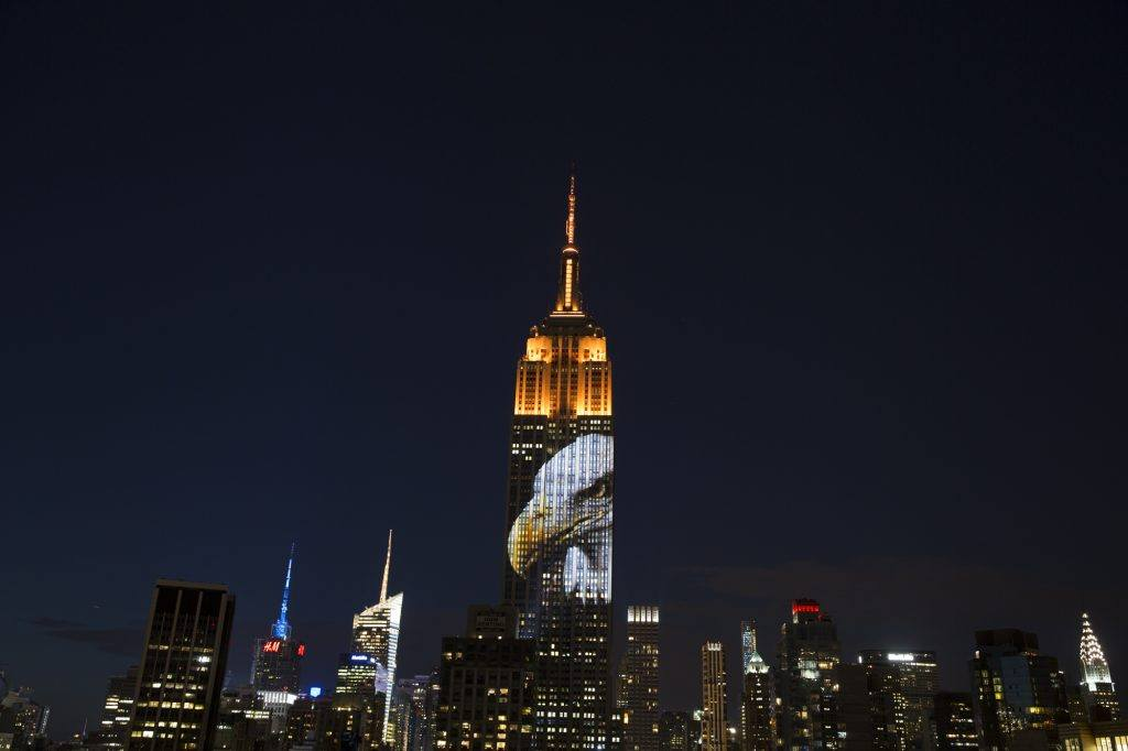 Bensar's PhotoArk profile, originally taken by Joel Sartore is projected onto the face of the Empire State Building (Photo: Chris Fanning Courtesy of Oceanic Conservation Society)